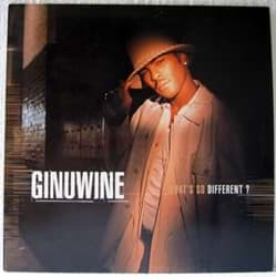 Bild von Ginuwine - What's So Different