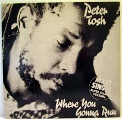 Bild von Peter Tosh - Where You Gonna Run