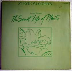 Bild von Stevie Wonder - The Secret Life Of Plants