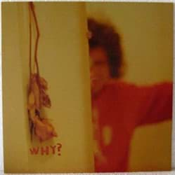 Bild von Why? - The Early Whitney